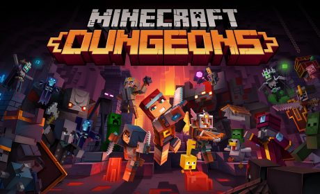 Minecraft Dungeons Party Perth